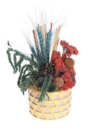 Kibrithane Çiçek Yapay Çiçek Beton Saksı Doğal Kuru Çiçek Aranjman Kc00200833 Renkli